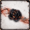 Black Rose Wars ?>